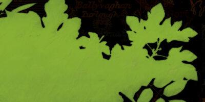 LISTKI – CD (2014)